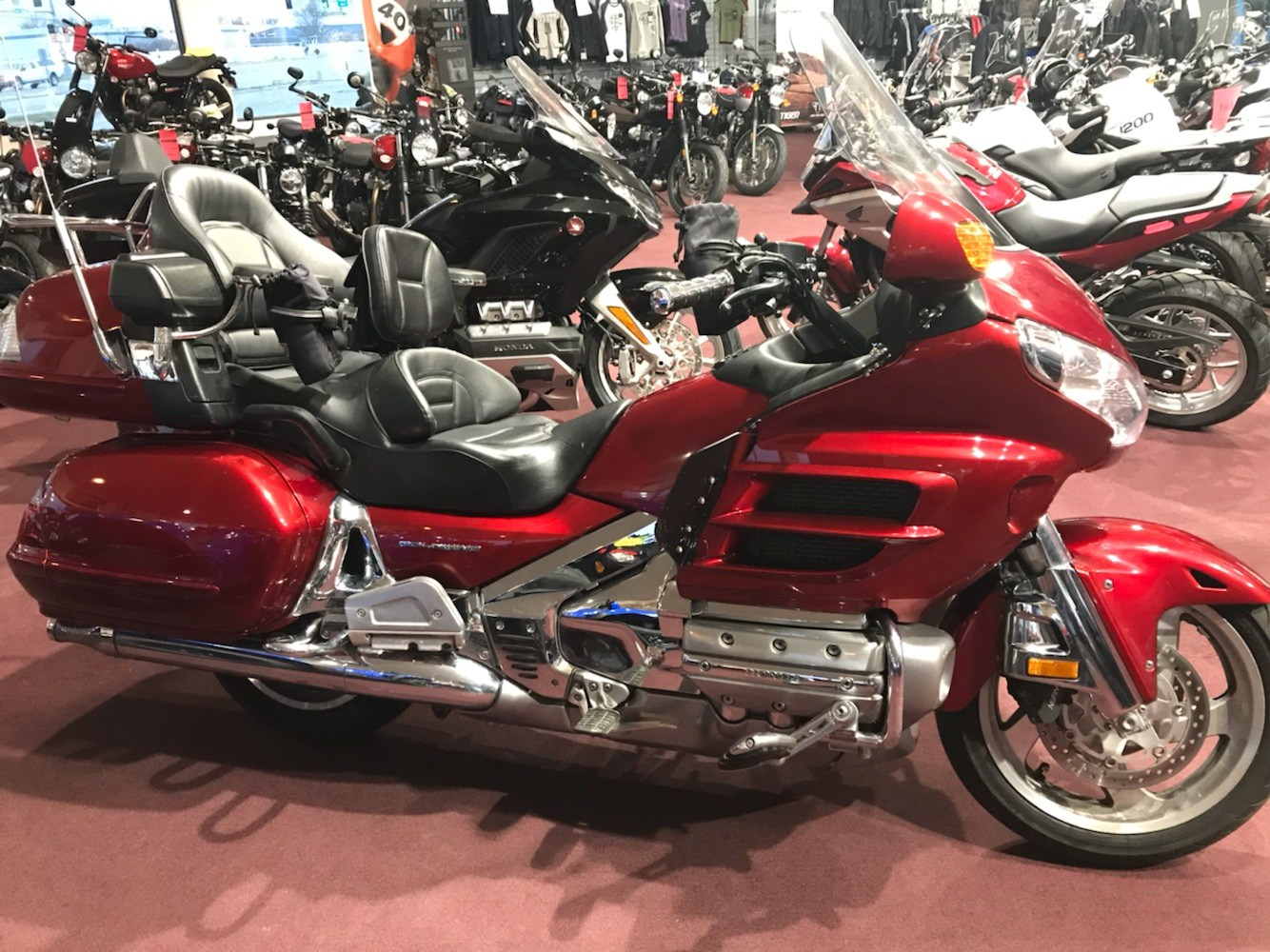 2008 Honda Gold Wing® Premium Audio in Belle Plaine, Minnesota - Photo 1