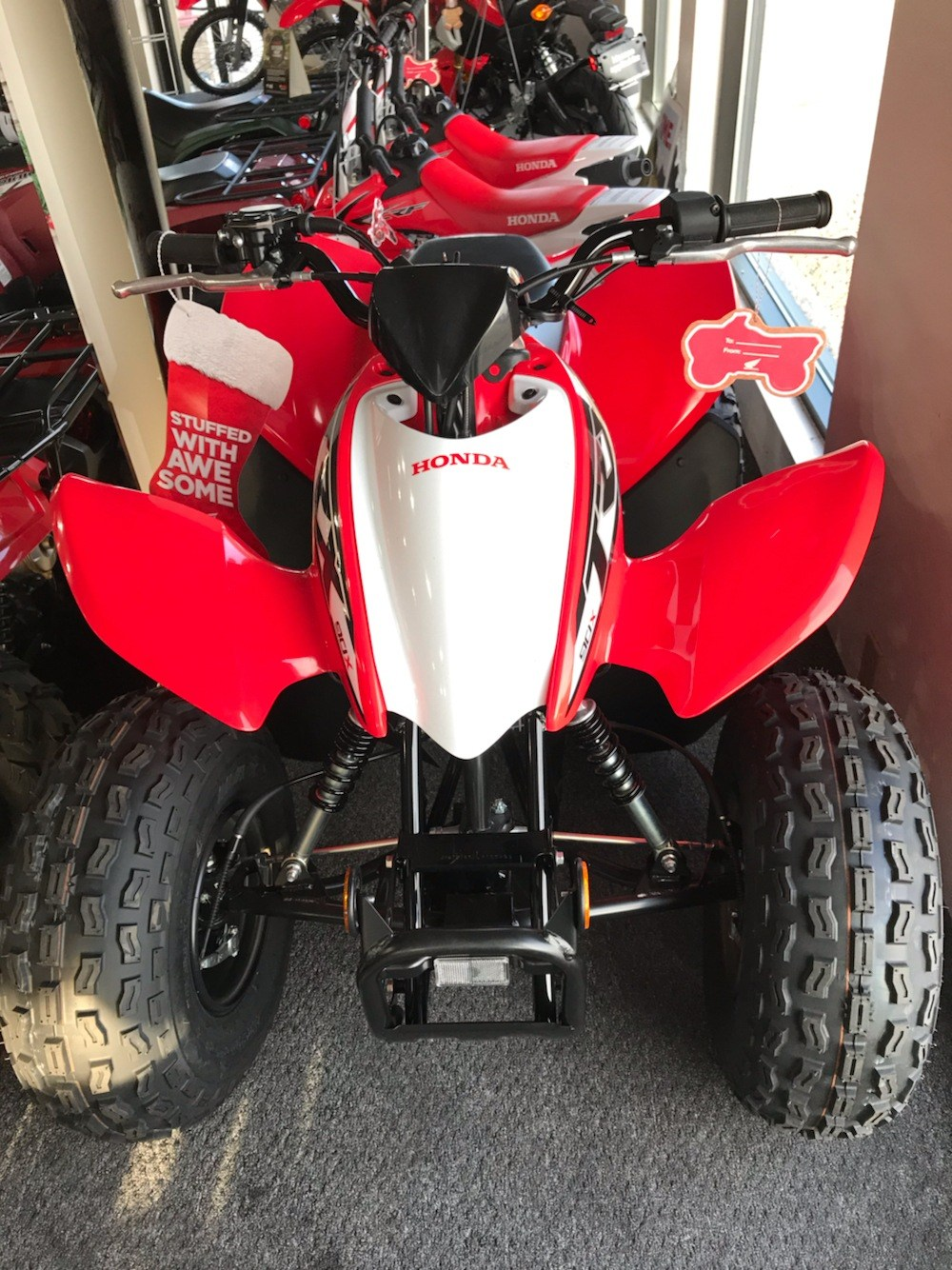 2020 Honda TRX90X in Belle Plaine, Minnesota - Photo 2