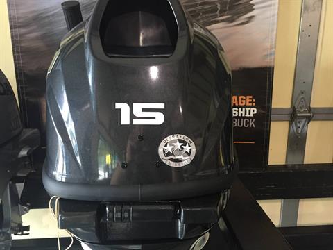 2018 Evinrude E15RG4AF in Mountain Home, Arkansas