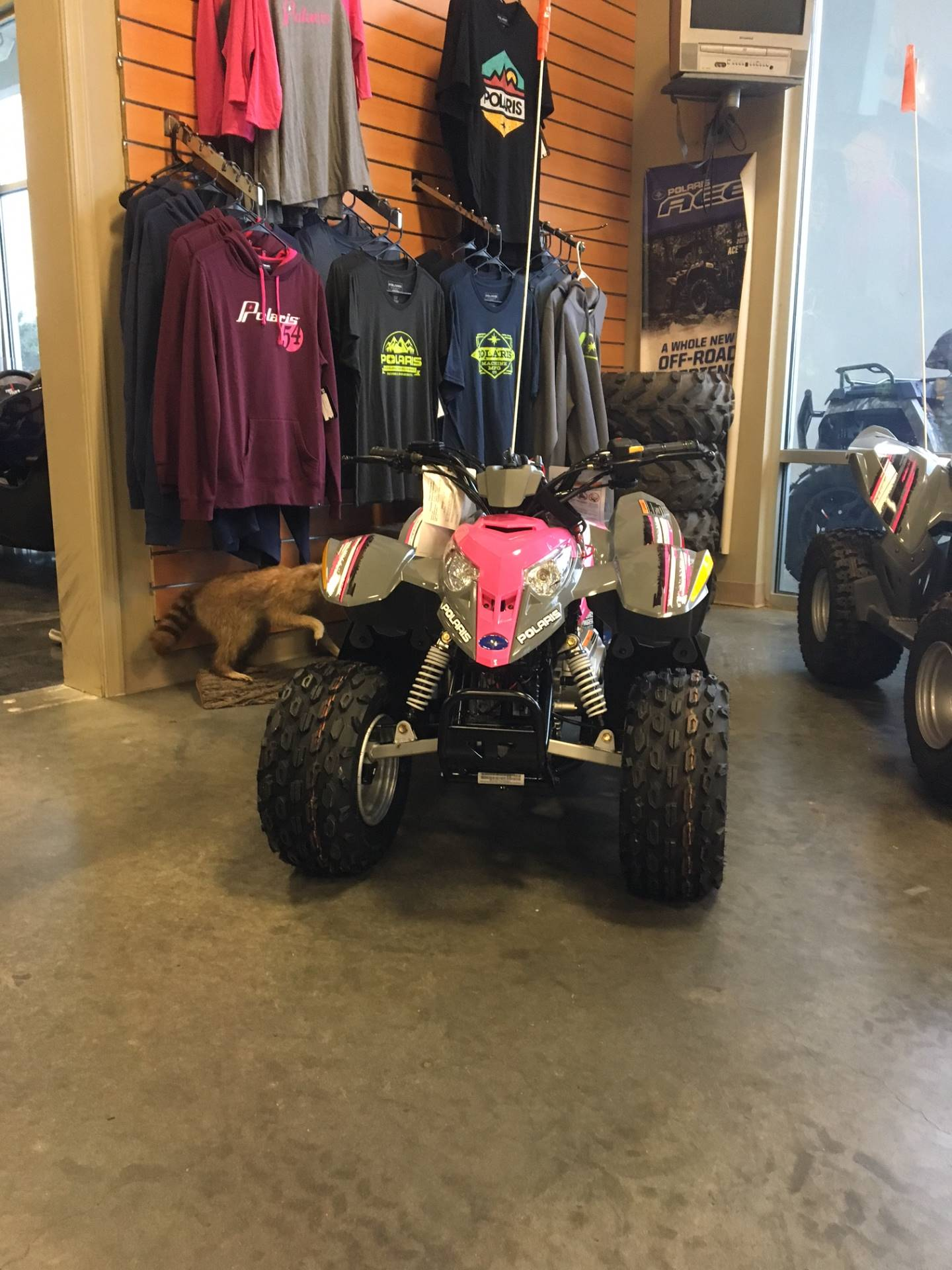 2018 Polaris Outlaw 50 in High Point, North Carolina