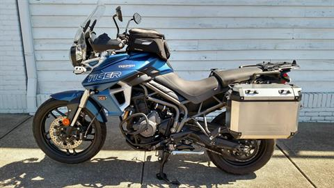 2019 Triumph Tiger 800 XRt in Columbus, Ohio - Photo 1