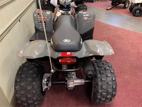2019 Polaris Phoenix 200 in Petersburg, West Virginia