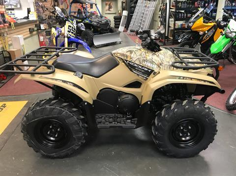 2019 Yamaha Kodiak 700 in Petersburg, West Virginia - Photo 1