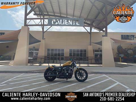 2019 Harley-Davidson Iron 883™ in San Antonio, Texas - Photo 1