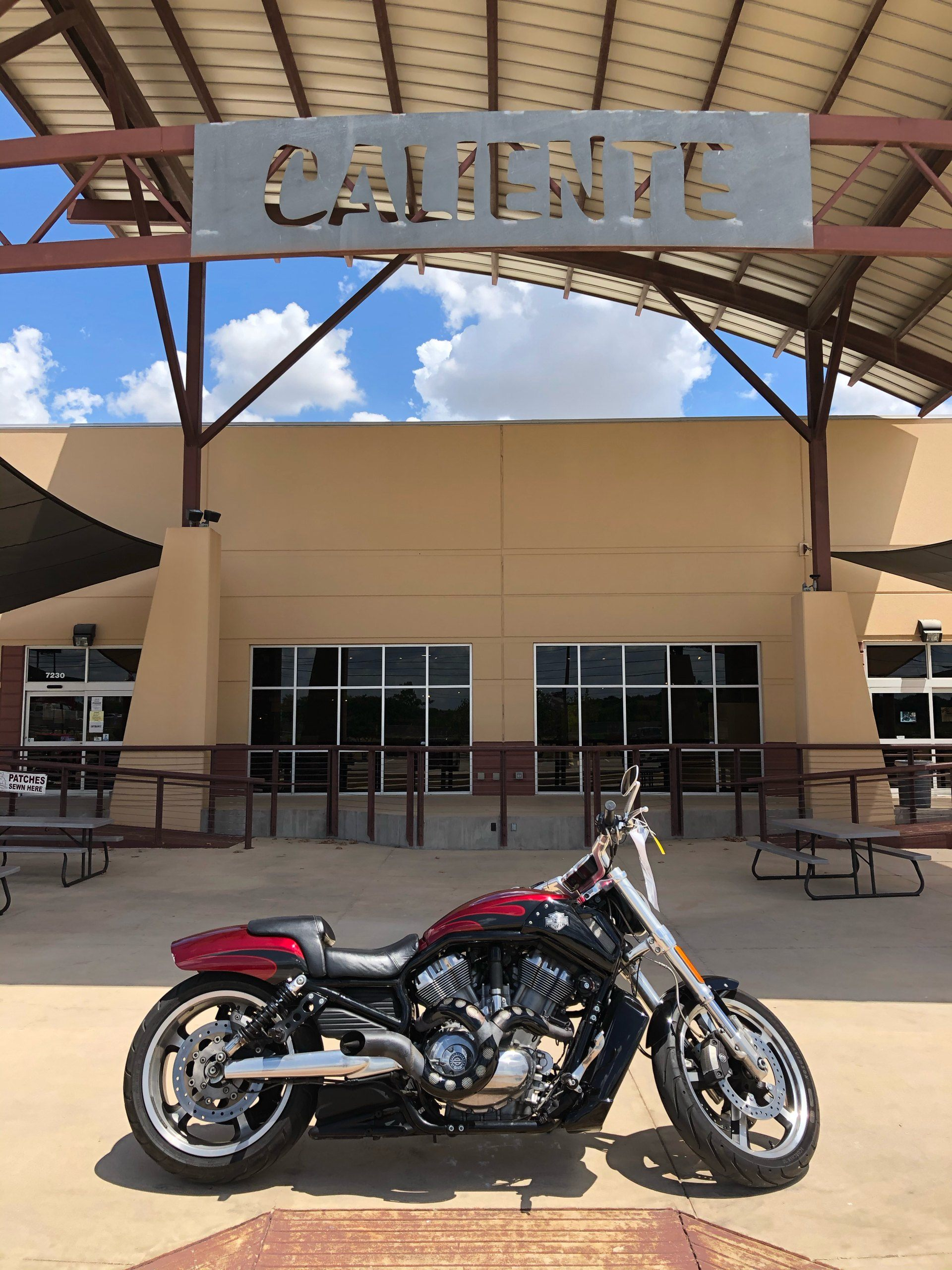 2017 Harley-Davidson V-ROD Muscle in San Antonio, Texas - Photo 1