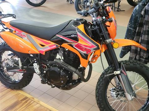 2020 SSR Motorsports XF250 Dual Sport in Sioux City, Iowa - Photo 3