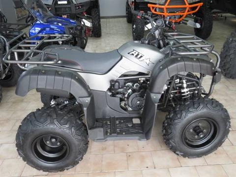 2018 ATI PIRANHA EFI UTILITY 176cc in Saint Peters, Missouri