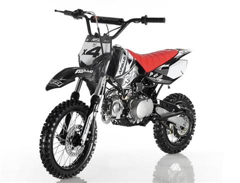 2018 Cougar X4 Dirt Bike in Atlantic Beach, Florida