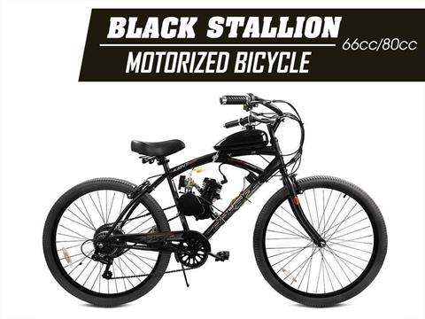 2019 Gas Bike  STALLION 80CC ANGLE FIRE MOTORIZED BICYCLE in Atlantic Beach, Florida