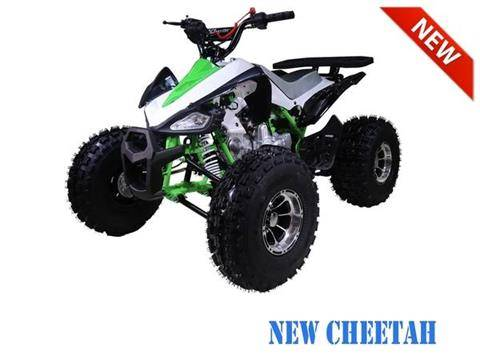 2018 AWL Raptor 125cc Kids Sport Upgraded in Atlantic Beach, Florida