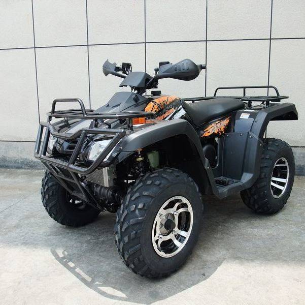 2019 AWL 300cc Monster 4x4 in Jacksonville, Florida - Photo 2