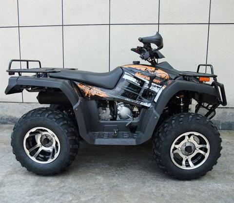 2019 AWL 300cc Monster 4x4 in Jacksonville, Florida - Photo 4