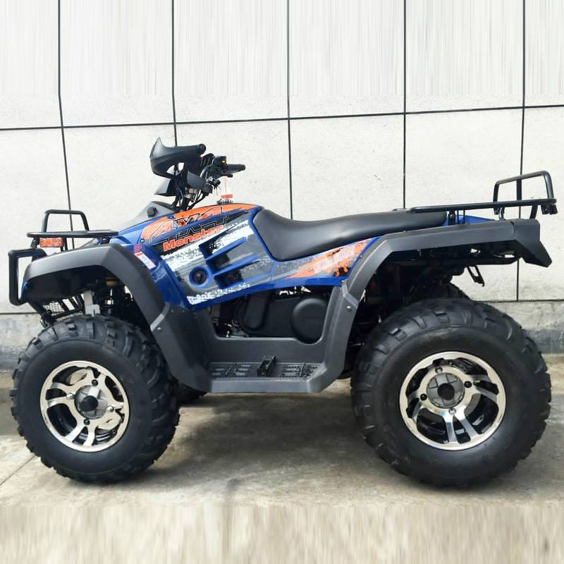 2019 AWL 300cc Monster 4x4 in Jacksonville, Florida - Photo 6