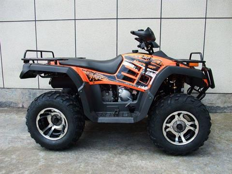2017 AWL 300cc Monster 4x4 in Jacksonville, Florida