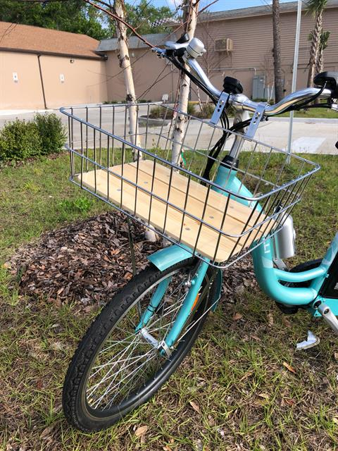 2019 Bintelli Journey XL Limited in Jacksonville, Florida - Photo 2