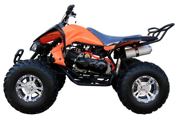 2018 AWL Raptor 150cc Full Size Upgraded in Jacksonville, Florida