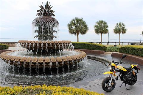 2016 Adly Moto RT50 in Jacksonville, Florida