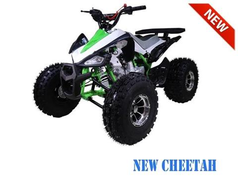 2018 AWL Raptor 125cc Kids Sport Upgraded in Jacksonville, Florida