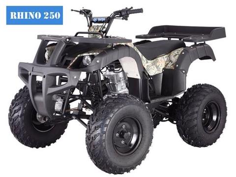 2017 Taotao USA 250CC Full Size With reverse in Jacksonville, Florida