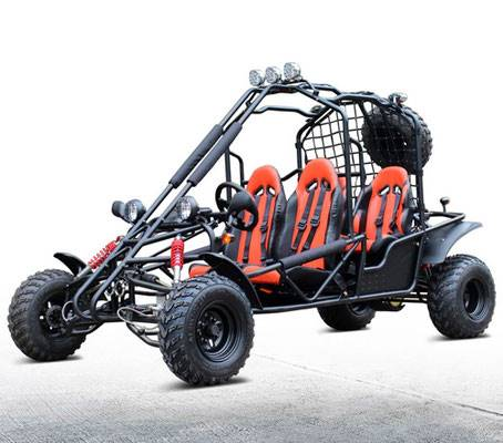 2019 Cougar 4 Seat Fullsize Adult Buggy in Jacksonville, Florida - Photo 1