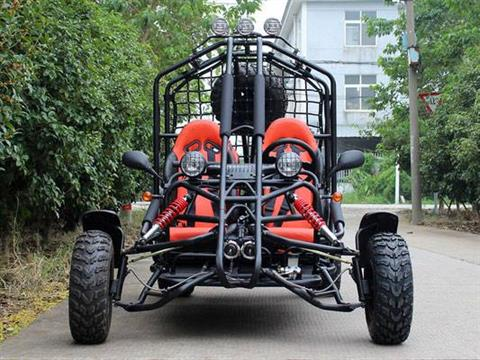 2019 Cougar 4 Seat Fullsize Adult Buggy in Jacksonville, Florida - Photo 3