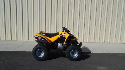 2015 Can-Am DS 90™ in Moses Lake, Washington
