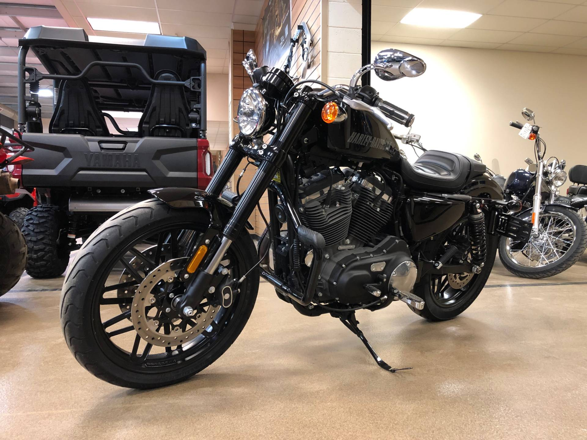 2016 Harley-Davidson Roadster™ in Marietta, Ohio