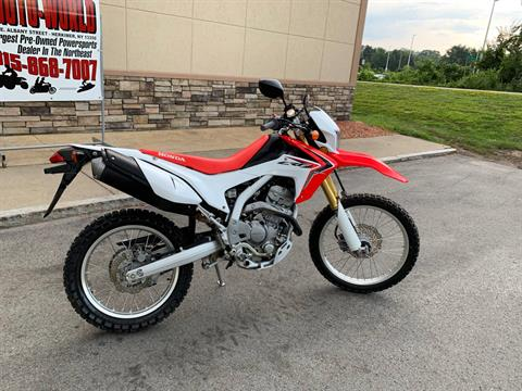 2014 Honda CRF®250L in Herkimer, New York - Photo 10