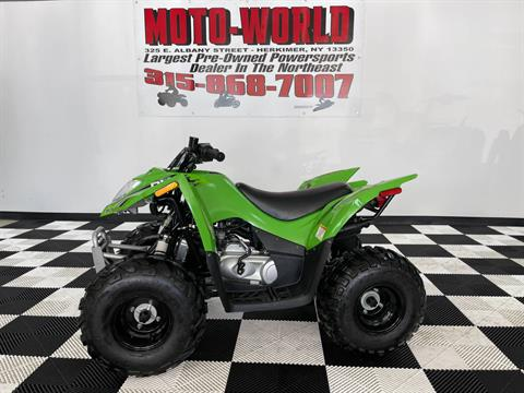 2017 Arctic Cat DVX 90 in Herkimer, New York - Photo 1