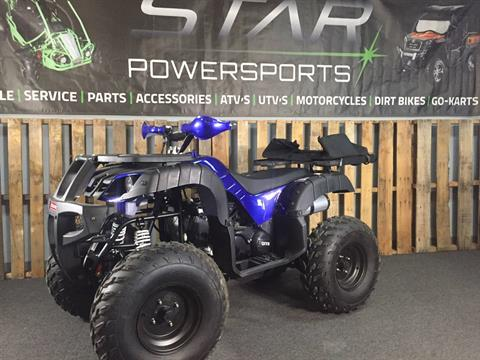 2019 Coolster ATV-3150DX-4 in Knoxville, Tennessee - Photo 1
