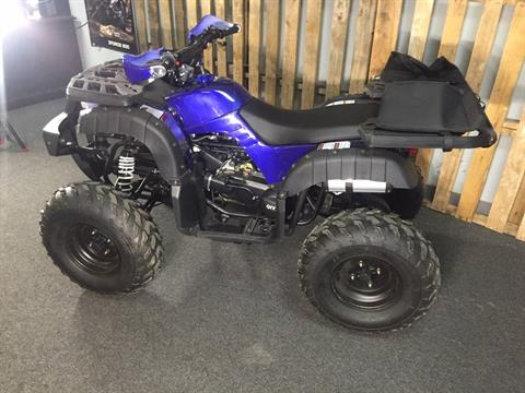 2019 Coolster ATV-3150DX-4 in Knoxville, Tennessee - Photo 3