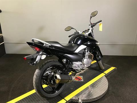 2013 Suzuki GW250 in Tyrone, Pennsylvania - Photo 12