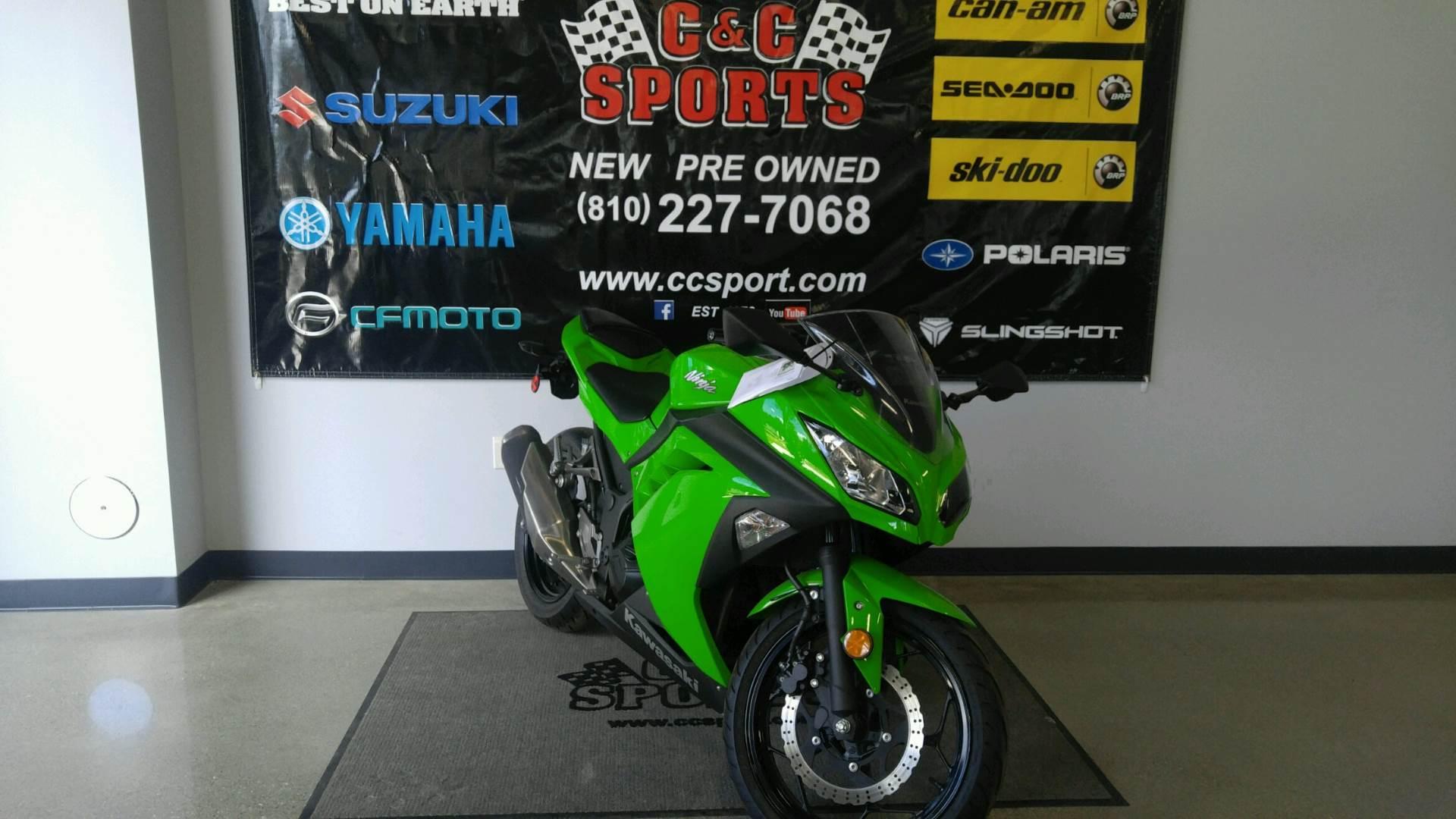 2015 Kawasaki Ninja® 300 in Brighton, Michigan