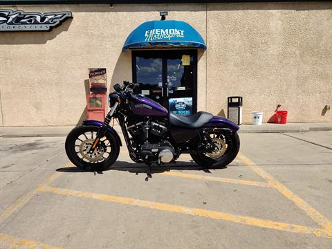 2014 Harley-Davidson Sportster® Iron 883™ in Florence, Colorado