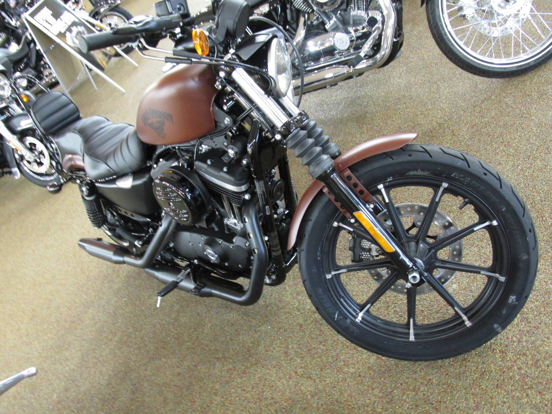 2017 Harley-Davidson Iron 883™ in Knoxville, Tennessee