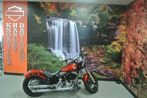 2014 Harley-Davidson Softail Slim® in Knoxville, Tennessee