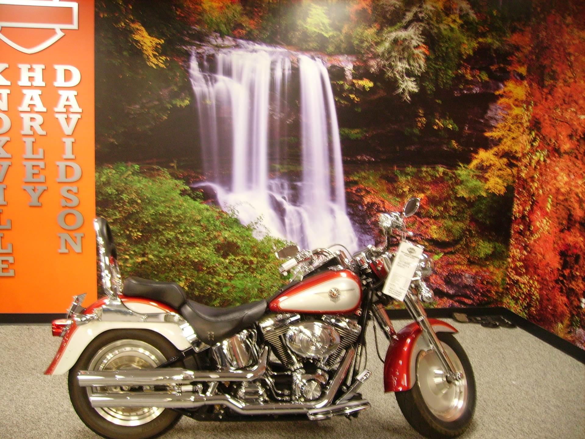 2004 Harley-Davidson FLSTF/FLSTFI Fat Boy® in Knoxville, Tennessee