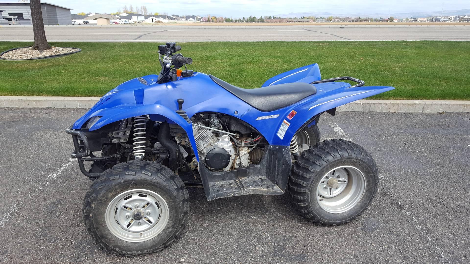 2007 Wolverine 350