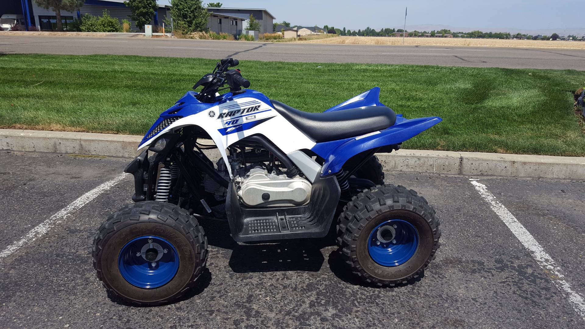 2016 yamaha raptor 90 for sale. Black Bedroom Furniture Sets. Home Design Ideas