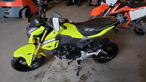 2017 Honda Grom in Baldwin, Michigan