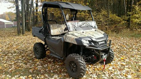 2017 Honda Pioneer 700 Deluxe in Baldwin, Michigan