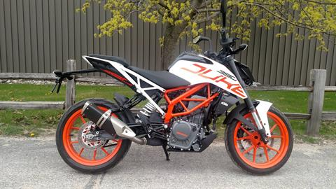 2017 KTM 390 Duke in Baldwin, Michigan