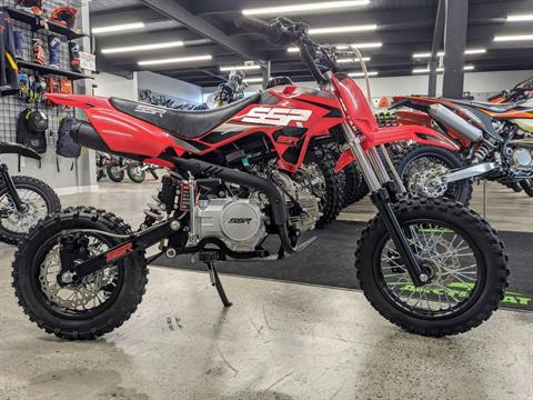 2021 SSR Motorsports SR110 in Gresham, Oregon - Photo 2