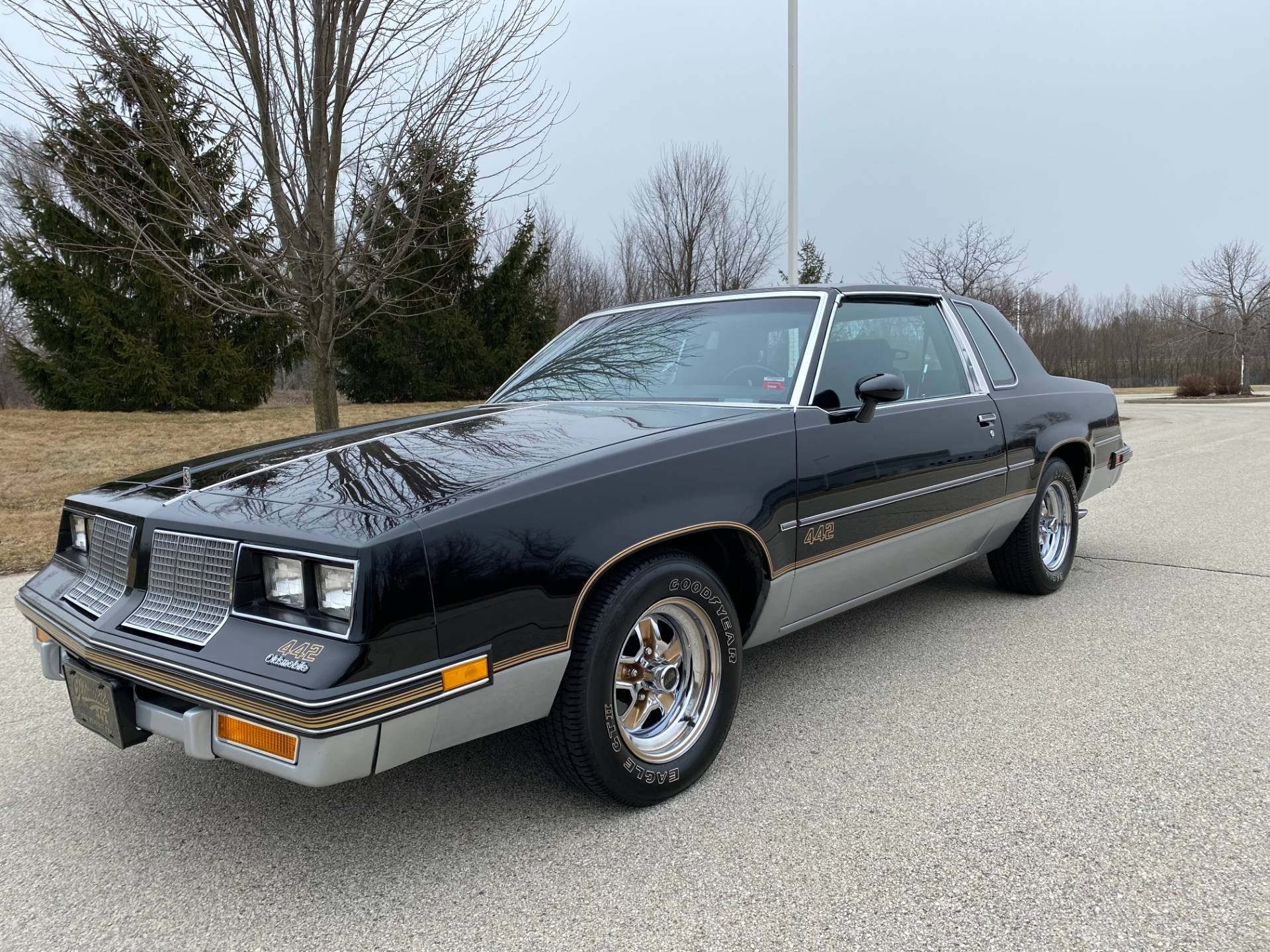 1985 Oldsmobile Cutlass Salon 442 in Big Bend, Wisconsin - Photo 3