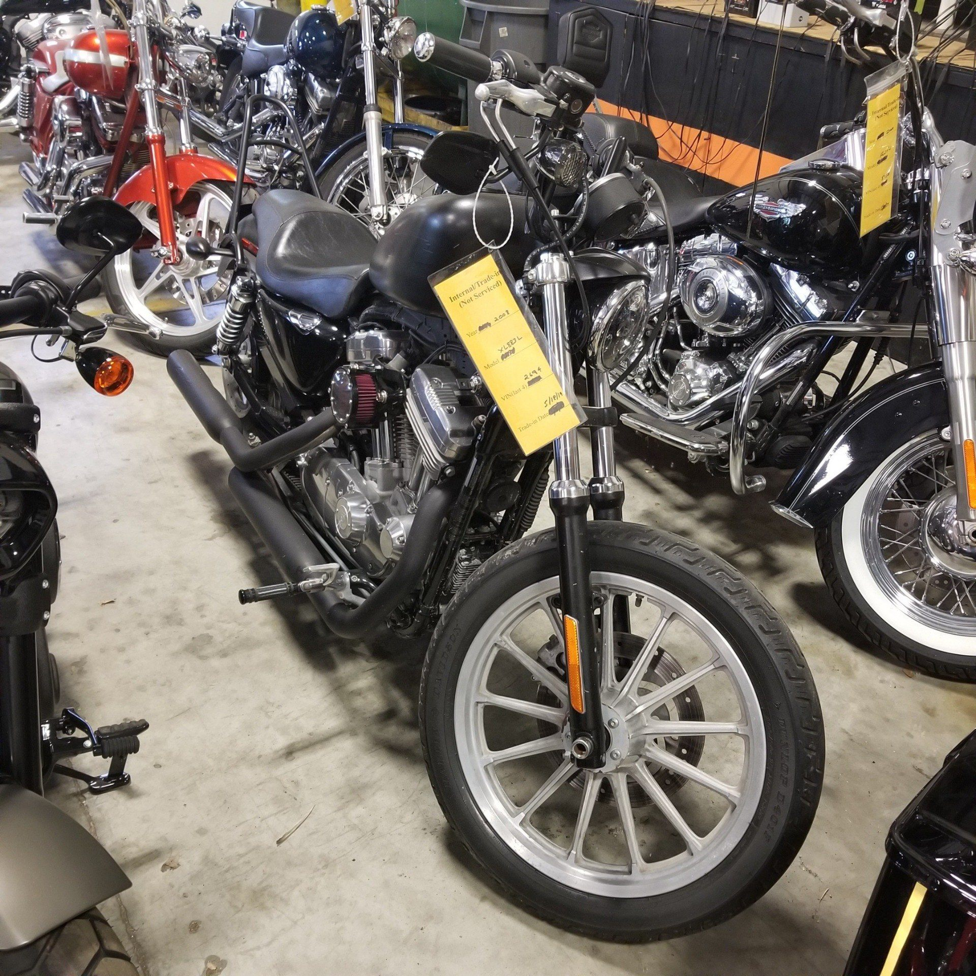 2008 Harley-Davidson Sportster® 883 Low in Mentor, Ohio - Photo 1