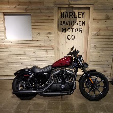2017 Harley-Davidson Iron 883™ in Mentor, Ohio - Photo 1