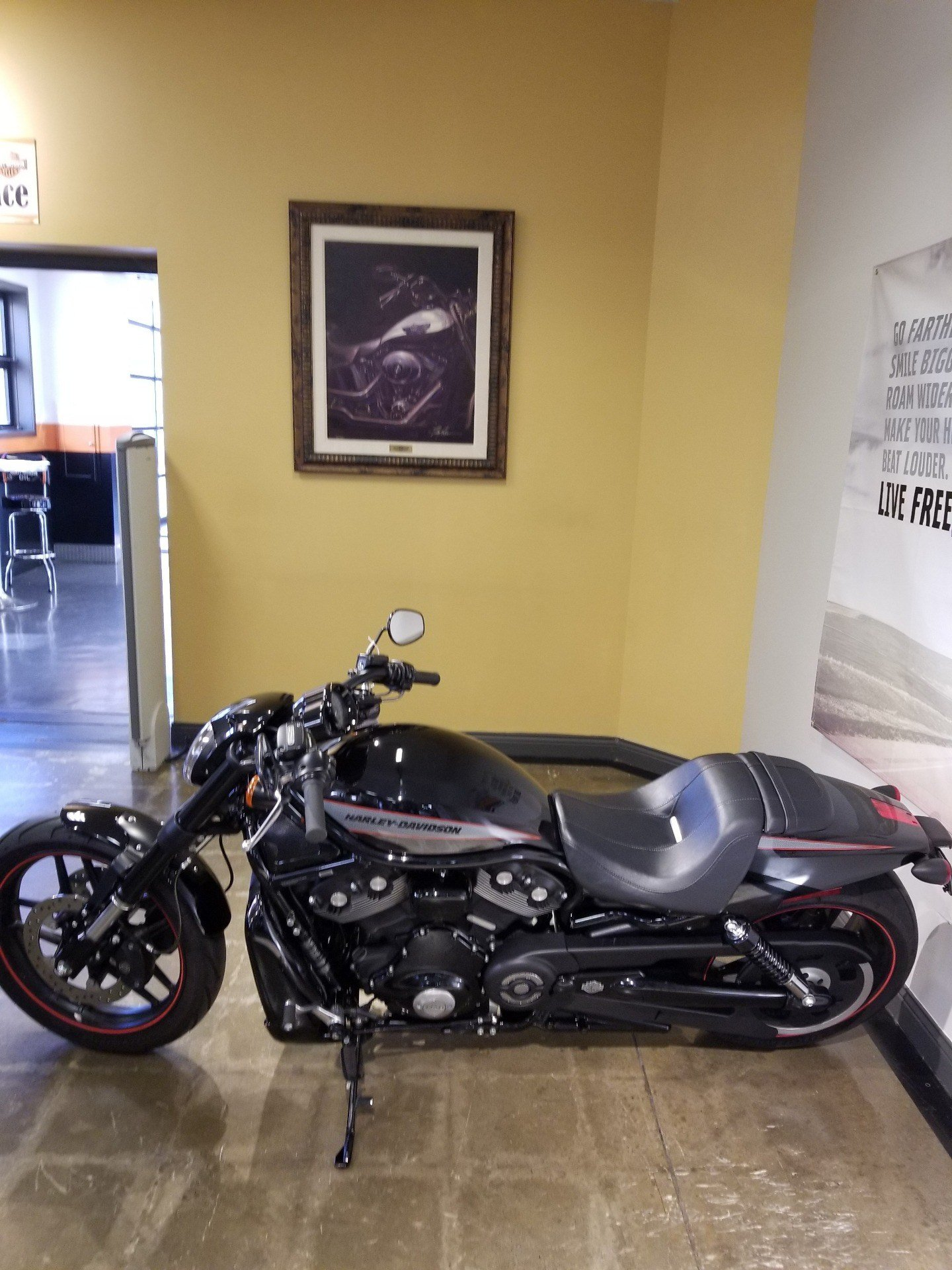 2013 Harley-Davidson Night Rod® Special in Mentor, Ohio