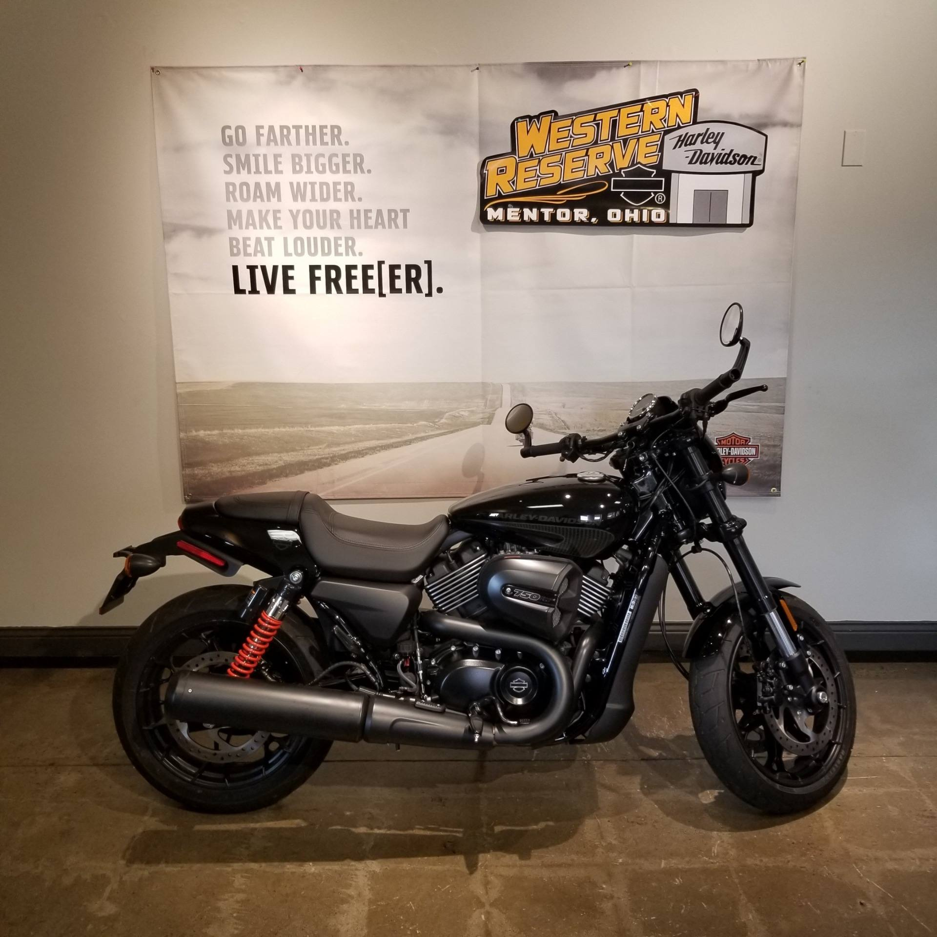 2018 Harley-Davidson Street Rod® in Mentor, Ohio - Photo 1