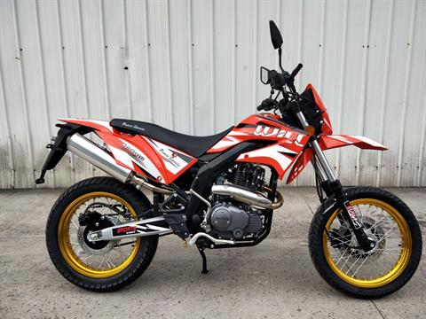 2020 Bashan MotoMax 250 in Norcross, Georgia