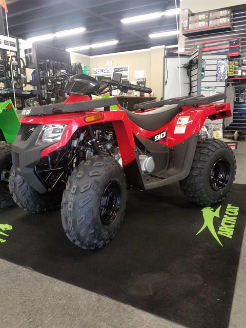 2017 Arctic Cat Alterra 90 in Ada, Oklahoma